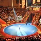 """БФ """"Система"""" откроет двери Цирка Никулина и театров для детей-сирот и детей-инвалидов"""
