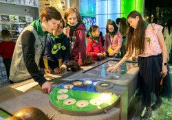 Школы начнут проводить учебные дни в музеях