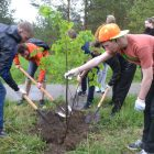 РУСАЛ направит 1,5 млн рублей на озеленение городов