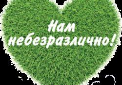 Запуск Стипендиальной программы поддержки одаренных музыкантов г. Тольятти «Импульс»